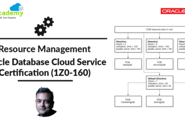 Resource Management: Oracle Database Cloud Certification (1Z0-160) Performance Management