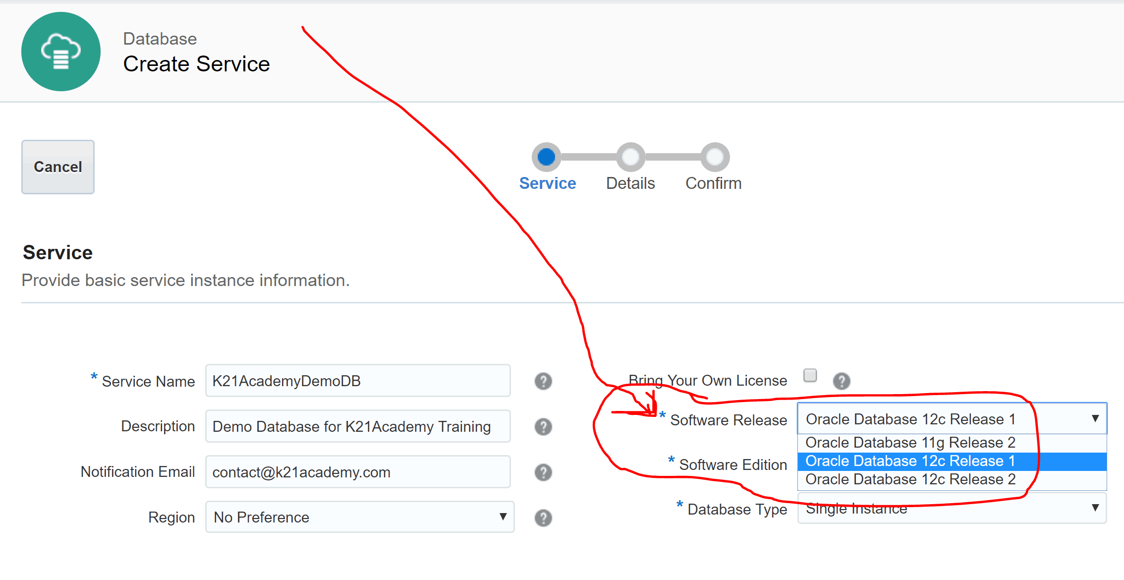 Create specific software release