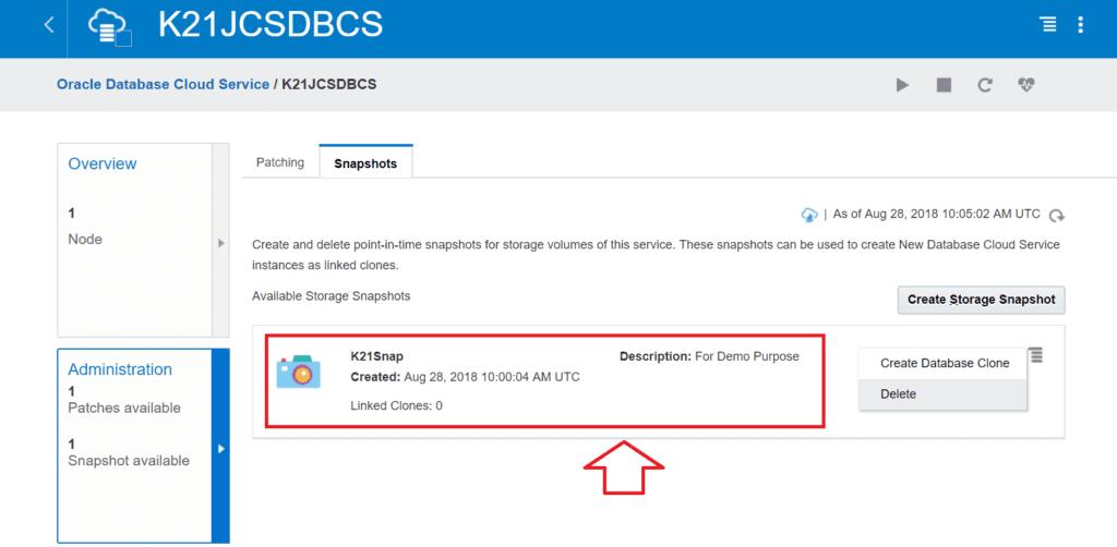 Oracle Database Cloud Snapshot