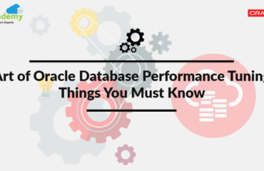 Art of Oracle Database Performance Tuning: Things You Must Know