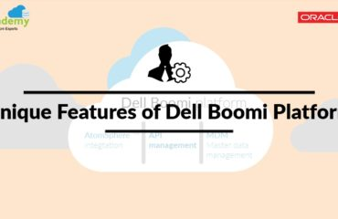 Unique Features of Dell Boomi Platform