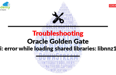 [Solved] Golden Gate - ggsci: error while loading shared libraries: libnnz11.so