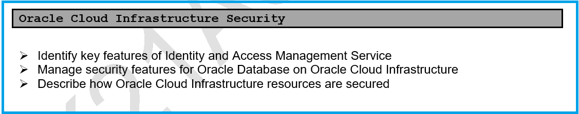 Oracle Cloud Infrastructure Security