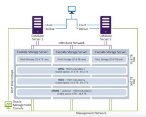 Exadata Storage Options