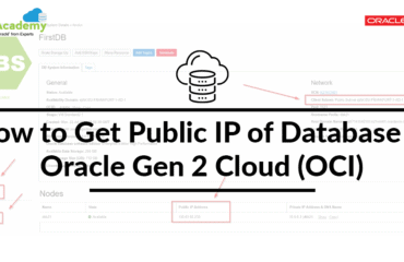 How to Get Public IP of Database In Oracle Gen 2 Cloud (OCI)